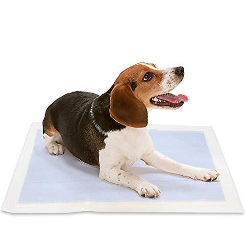 ZISITA Bag Super absorberende huisdier luier voor honden katten wegwerp hond luiers Puppy trainingspads kat huisdieren matten benodigdheden