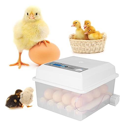 TOPQSC Incubadora de Huevos, Incubadora de Huevos Automática Termostática Doble de 16 Piezas con Incubadora de Solapa, Incubadora de Pollos y Gansos para Incubar Huevos de Pavo y Codorniz