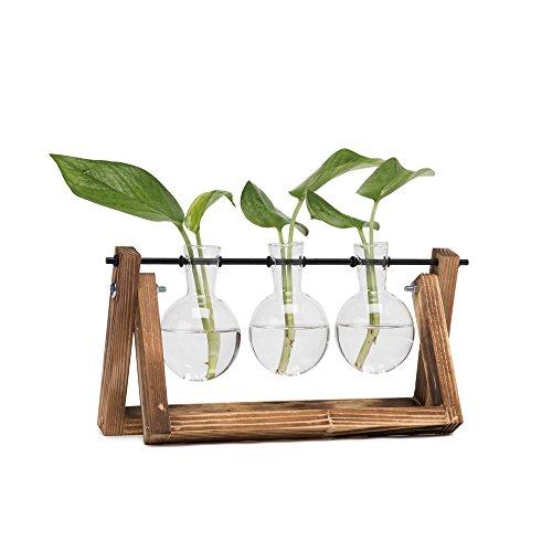 Hyindoor Lamp Vaas met Vintage Houten Stand en Metalen Roterende Stang voor Hydroponics Planten Desktop Glas Planter voor Home Decoratie