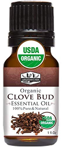 1 fl Oz / 30 ml Organic Clove Bud Essential Oil USDA Certified Organic Clove Oil 100% Pure amp Natural Clove Essential Oil Undiluted Clove Essential Oil Organic Syzygium Aromaticum Oil