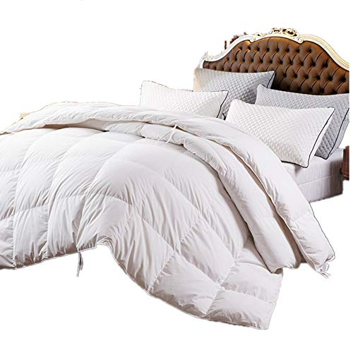 ZOOM LUAN All Seasons Goose Down Comforter Queen Size Duvet Insert 750+Fill Power 100% Cotton Shell Down Proof , White Hypo-allergenic with Corner Tabs (White,Queen)