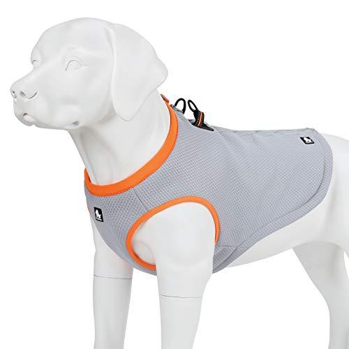 Juxzh Truelove Dog Cooling Vest