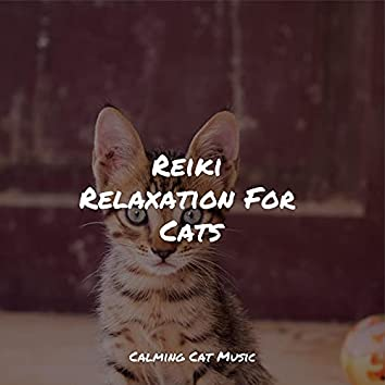 Reiki Relaxation For Cats