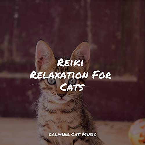 Cat Music, Music for Cats Project & Cat Music Dreams