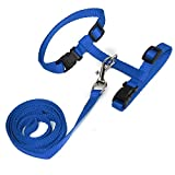 Cat Walking - Adjustable Pet Traction Rope Dog Walk Nylon Harness Collar Lead Leash Amp Safety - Puke Cop Computed Axial Tomography Pinch Vomit Catch Retch Nab Hombre Arrest - 1PCs