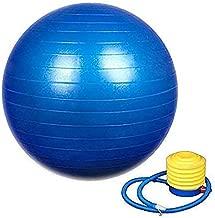 Shree krishna Exercise Heavy Duty Gym Ball - Non-Slip Stability Ball - Anti Burst Yoga Ball - Heavy Duty Balance Ball - Extra Thick Fitness Ball for Home,Gym,(excersice Equipment for Home)