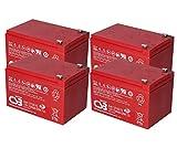 WSB Battery Juego de baterías de 48 V para patinete eléctrico (4 baterías de 12 V, 15 Ah, compatible con Mach1, SXT, MZ Charly)