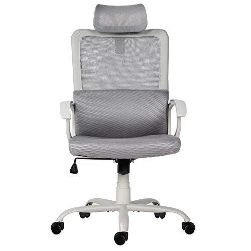 Sumgdesk Office Chair Mesh Office Chair Ergonomic Office Desk Chair Computer ..
