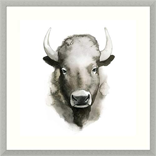 Framed Wall Art Print Watercolor Buffalo by Grace Popp 25.50 x 25.50 in.