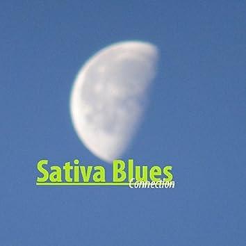 Sativa Blues