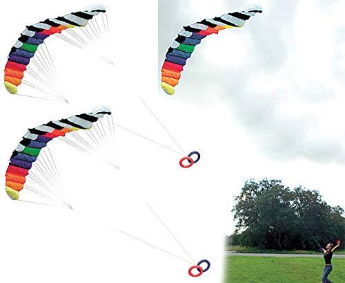 infactory Flug-Drachen: 2er-Set XXL-Lenkdrachen Speed mit 2 Meter Spannweite & 30 m Schnur (Sport-Lenkdrachen)