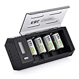 EBL Upgraded AA AAA C D 9V Battery Charger Dual USB Ports