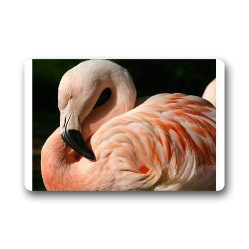 """shenguang Chilean Flamingo Custom Outdoor Indoor Doormat Personalized Design Machine-Wahable Neoprene Rubber Doormat (L23.6""""X15.7""""W)"""