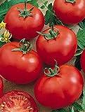 Semillas'Siberian precocious' tomate (10 semillas) 1 pieza