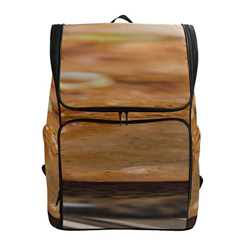 Delicious Chinese Traditional Dumplings Designer Bookbags For Women School Bags College Backpack For Men Mens Bag For College Fits 15.6 Inch Laptop And Notebook Canvas Daypack Best Hiking Bag