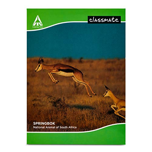 Classmate Notebook - 240mm x 180mm, Soft Cover, 172 Pages, Single Line - Pack of 6