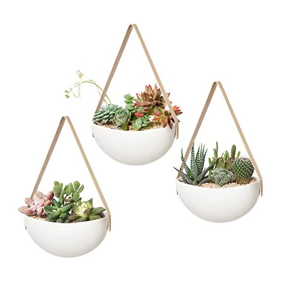 Mkono Ceramic Hanging Planter Wall Planters Set of 3 Modern Flower Plant Pots for Succulent Herb Air Plant Live or Faux… 1 These wall hanging planter can be used to add some vertical greenery to any wall in your home, great to display your lovely plants like cactus, herbs, succulents, air plants or other small plant. Beautifully for storage paint brushes, pens or other small things. Suitable for indoor and outdoor use. Material: white ceramic flower pot, leather strap and brass screws. Wide version of the plant pot will be better to display your plant collection. Wall hanging design is perfect for keeping your lovely plants out of the reach of pets and children! Bring modern design and industrial style to your wall with a leather strap and a solid brass screw. High fired porcelain creates a white smooth matte glaze look, and the interior is finished with glaze. Elevates the room and accentuates the beauty of your houseplants with its simple but sculptural presence.