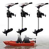Motori fuoribordo 65 LBS per barche,Motore elettrico,Motore per barca,Motore fuoribordo,Motore marino,Motore a benzina,Velocità nominale 1420 rpm,Rumore 50dB