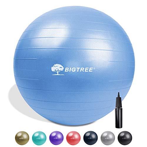 Bigtree Gymnastikball (55-75 cm) extra dicker Yoga-Ballstuhl, bruchsicher, strapazierfähig, mit schneller Pumpe (Büro & Zuhause & Fitnessstudio), blau, 55CM