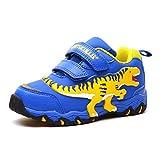 Qianliuk Zapatillas de deporte de chicas dinosaurio de los muchachos de impresión resistente al desgaste zapatos tenis Casual Calzado niños corriendo Unisex niños 1c 8 UK Niño