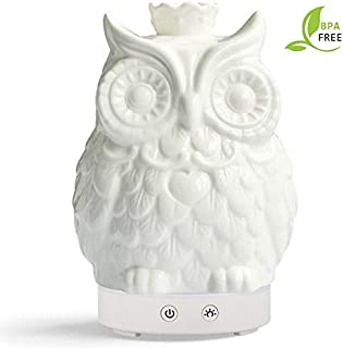 Essential Oil Diffuser 120 Milliliter Cool Mist Humidifier -14 Color LED Nihgt Lamps -Crafts Ornaments All in 1 is the Round Rich Upgrade Whisper-Quiet Operation Ultrasonic Ceramics Owl Humidifiers US120V