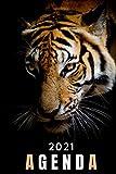 agenda 2021 tigre: agenda 2021 semana vista tiger - planificador semanal y mensual 2021 A5 - agenda 2021 de enero a diciembre - una Semana en dos ... agenda anual 2021 - regalo tigre hombre mujer