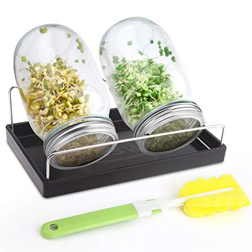 Sprouting Jar Kit-2 Wide Mouth Quart Mason Jars with 304 Stainless Steel Screen Sprout Lids,Melamine Tray,Stand and Canning Brush | Seed Sprouter Set for Growing Broccoli, Alfalfa, Mung Bean (Black)