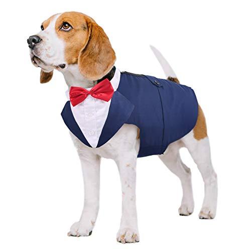 PUMYPOREITY Ropa para Perros Pajarita Esmoquin Traje Smoking Perro Mascota Boda Formal Traje Elegante con Bandana Retirable Camisa de Esmoquin Formal para Perros Pequeños Medianos Grandes(Azul,L)