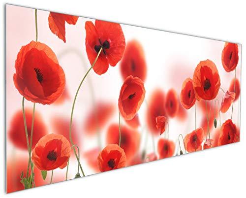 Wallario Küchenrückwand aus Glas, in Premium Qualität, Motiv: Leuchtende Mohnblumen - Rote Mohnblumenblüten | Spritzschutz | abwischbar | pflegeleicht