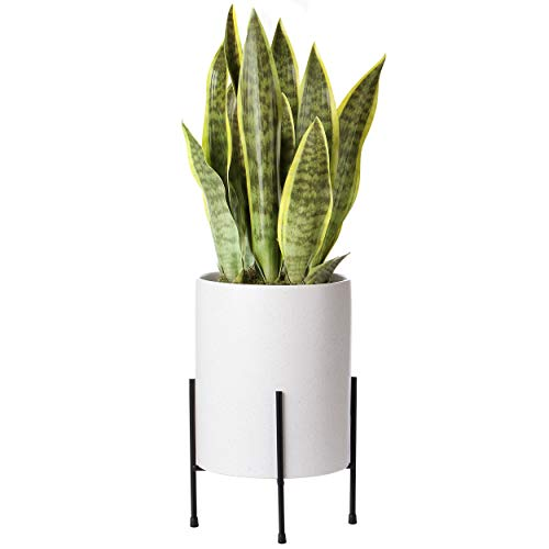 Mid Century Planter with Stand Included | 8 Inch Ceramic Plant Pot with Stand Perfect as an Indoor Planter for Snake Plant | Modern Large Ceramic Planter with Drainage Hole | Planter with Legs | White
