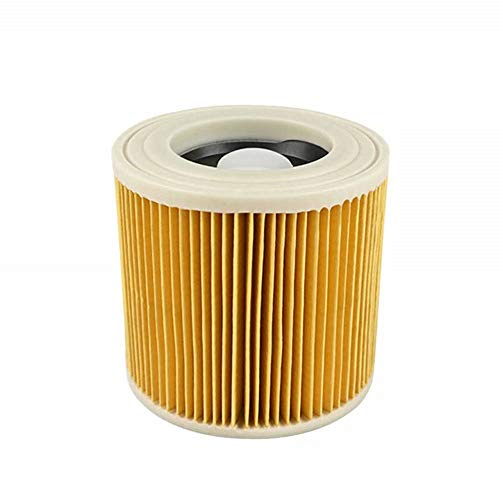FBSHOP(TM)) - Filtro a Cartuccia per aspirapolvere Karcher Wet And Dry Hoover