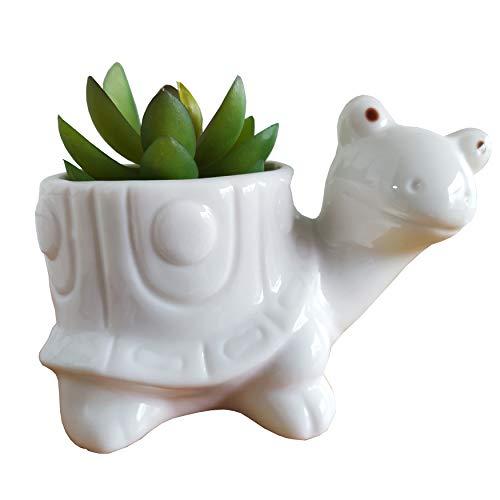 Cute Cartoon Animal Shaped Ceramic Succulent Cactus Vase Flower Plant Pot for Home Garden Office Desktop Decoration (Small, Turtle)