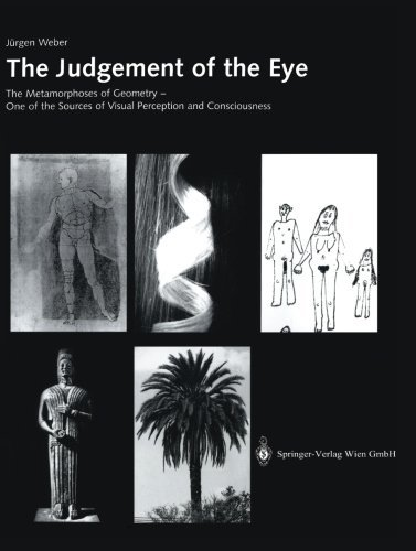 The Judgement of the Eye by J????rgen Weber (2002-07-02)