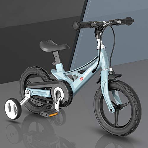 ZKHD Bicicletta Per Bambini in Lega Di Magnesio DA 12 Pollici Pro Ragazzi E 3 Anni, Bicicletta Per Bambini, Bicicletta Pro Bambina, Pneumatici Antideflagranti Non Gonfiabili,Blau,12 inches