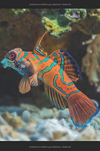 Aquarium Tagebuch: Planer, Notizbuch, Bestandsbuch, Futterplan für alle Auqarianer und Aquaristik Fans ♦ Logbuch für über 100 Einträge ♦ 6x9 Format ♦ Motiv: Aquariumfisch