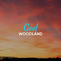 Cool Woodland by Rainforest Ambience & Rain Sounds & Nature