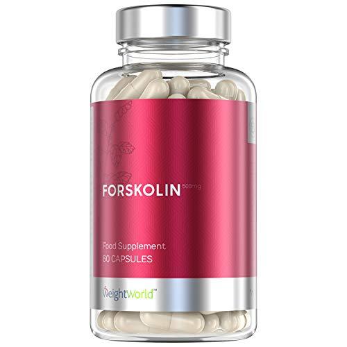 Forskolin Kapseln - 500mg Coleus Forskohlii Extrakt natürlich & hochdosiert, Zum Abnehmen sowie zur Erhaltung der Muskeln, Diät mit Buntnessel Kapseln wirksam unterstützen - 60 Kapseln vegan