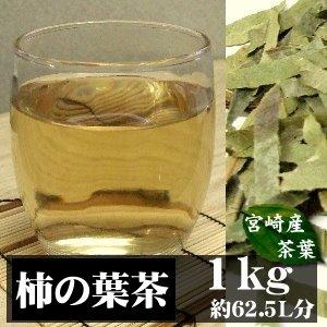 宮崎県産 柿(かき)茶 (柿の葉・茎) 1kg