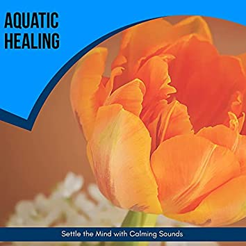 Aquatic Healing - Settle The Mind With Calming Sounds