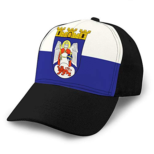 jiilwkie Adult Grid Baseball Caps Unisex Sunshade Hat Mesh Hat Snapback Cap Flag of siegburg in North Rhine Westphalia Germany Sports Snapback