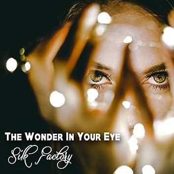 The Wonder In Your Eye (Radio Mix)