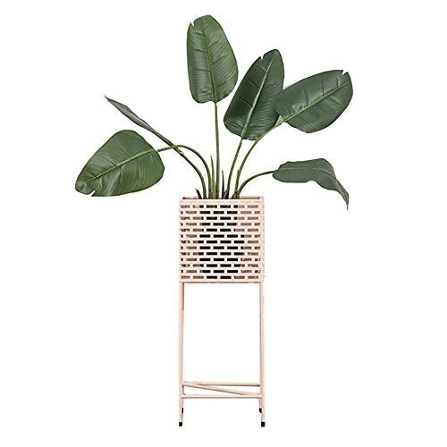 GJX-Stand de Fleurs Support À Plantes Cadre de Fleurs Nordic Grille de Sol en Fer forgé Plantes d'intérieur et d'extérieur présentoir Stockage Vertical Rose Bleu (Color : Pink)