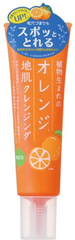ポップ簡単に啓発する植物生まれのオレンジ地肌クレンジングN