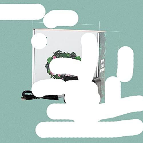 Terrarios de nebulizador de reptiles inteligente Humidificador Temporizador electrónico Kit de sistema de pulverización de niebla automática de bosque tropical Control de aspersión con caja