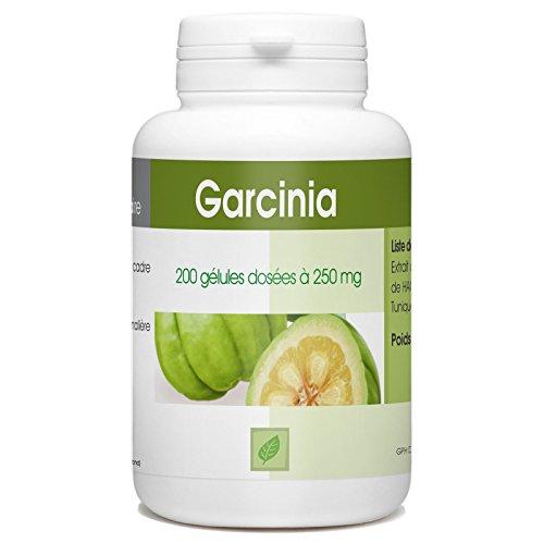Garcinia Cambogia - 250 mg - 200 gélules