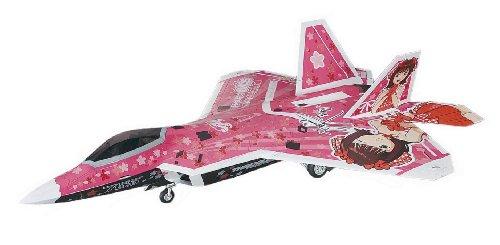 F-22A Raptor `The Idolmaster Amami Haruka` 1/48