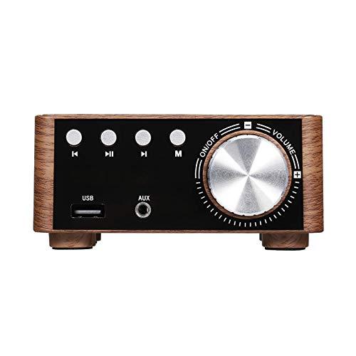 Reproductor de coche Grano de madera BT 5.0 amplificador de audio de potencia digital clase D 50WX2 estéreo audio para el hogar coche marino reproductor de DVD CD