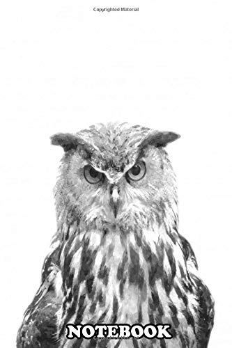 Notebook: Black And White Owl Portrait Animal Illustration Digi , Journal for Writing, College Ruled Size 6