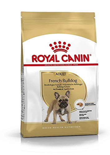 ROYAL CANIN Cibo Secco per Cane French Bulldog - 9000 gr