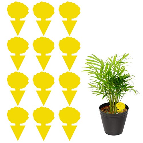 12 Pack Sticky Trap Fruit Fly and Fungus Gnat Trap Killer Indoor and Outdoor Protect The Plant NonToxic and OdorlessTreeA1 Shape